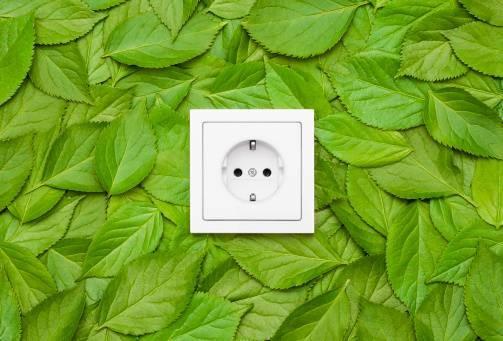 Renewable Energy Co-operation