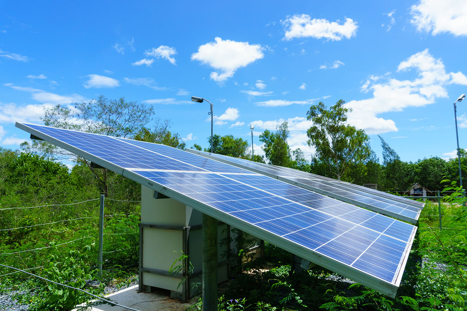 solar cell generating electricity and installed in the forest wi